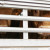 Više od 860 mladih bikova brodom se vraća u Španjolsku - sve će ih eutanazirati