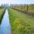 Dogovorene poljoprivredne kvote između EU i SAD?