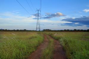 Subvencije za eletrifikaciju polja - po korisniku do 800.000 dinara