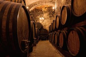 Vina od prokupca - autohtone sorte Srbije iz godine u godinu sve bolja