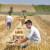 Na adrese poljoprivrednika poslano novih 130 ugovora vrijednih više od 45 milijuna kuna