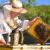 Pčelarski radovi krajem svibnja i u lipnju