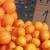 Potražnja za mandarinama manja nego prošle godine