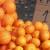 Potražnja za mandarinama manja nego prošle godine: Loše vrijeme utjecalo na kvalitetu