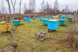 Dragoslav Jovanović četiri decenije u pčelarstvu
