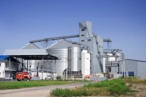 Ukrajina i dalje među pet najvećih svjetskih proizvođača raži