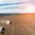 Osigurani poticaji za proljetnu sjetvu i proizvodnju mlijeka