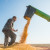 Vrućine neće uticati na kukuruz: Očekuje se dobar rod