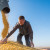 Na novosadskoj robnoj berzi najviše se trgovalo kukuruzom