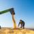 Prvi kupoprodajni ugovor za kukuruz novog roda - 24 dinara za kilogram