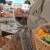 Prehrambeni trendovi: Što ćemo najviše jesti u 2020.?