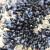 Uzgajališta dagnji: Uvjeti, kriteriji i način dodjele državne potpore