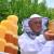 Raste cena bagremovog i kreće otkup meda u saću