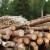 Hrvatske šume i Požgaj grupa: Dogovorena obročna otplata potraživanja