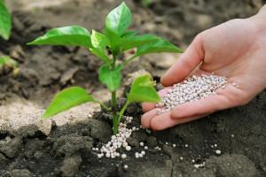 Od kontrole sirovina iz četiri rudnika do ICL gnojiva s najvišim standardom kontrole kvalitete