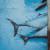 Izmjena Pravilnika o raspodjeli državne kvote za ribolov plavoperajne tune