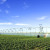 Silva Wendling: Bez navodnjavanja nema ozbiljne poljoprivredne proizvodnje