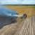 Trenje na kombajnu izazvalo požar - vatra progutala 1,5 hektar pšenice