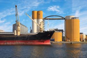 U Rusiji zabilježen pad izvoza ječma, u Ukrajini rast isporuka sojinih prerađevina