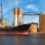 U Rusiji zabležen pad izvoza ječma, u Ukrajini rast isporuka sojinih prerađevina