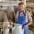 Ruše rekorde: Proizvest će 15 miliona litara mlijeka - doprinjela i redovna isplata poticaja