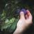 To što je vaš djed uzgajao šljivu - ne znači da vi na tom mjestu nećete narandžu