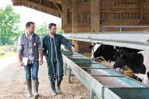 Milion eura za razvoj preduzetništva i u agroruralnom sektoru
