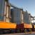 Cene ruske pšenice rastu, Argentina postaje konkurentan izvoznik suncokretovog ulja
