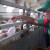 Afrička kuga svinja u Srbiji pod kontrolom