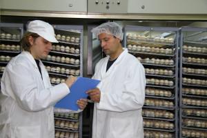 Počela nova pravila na tržištu jaja: Da li su proizvođači pripremljeni?!