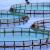 Mjera II.9: Prijelaz na sustave za okolišno upravljanje, reviziju i ekološku akvakulturu