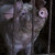 Zatvorio farmu, odselio se i ostavio 250 svinja da uginu