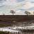Dugoročna prognoza: Čeka nas zima bez snijega, ali s mogućim poplavama?