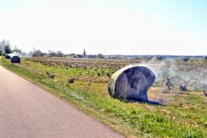 Ostali bez polovice uroda vinove loze - Francuskoj nisu pomogli ni helikopteri