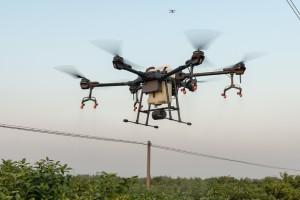Dron: Učinkovit pomagač i u voćarstvu - vidi i ono što ljudsko oko ne može