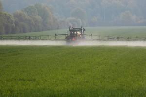 Pallas 75 WG - herbicid koji suzbija najvažnije uskolisne i širokolisne korove u žitaricama