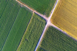 Da li će poljoprivredi budućnosti trebati poljoprivrednik?