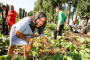 Društveni vrtovi sve popularniji u gradovima EU!
