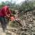 Drva za ogrev: Zakon, seča i bezbednost