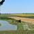 DZS objavio podatke o cijenama poljoprivrednih zemljišta u Hrvatskoj
