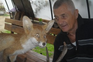 Štavljenje krzna (koža) i prepariranje lovačkih trofeja