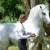 Šaptačica konjima Edit Kappel