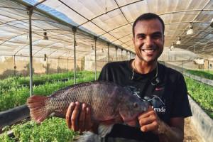 Usred pustinje uzgajaju i ribu i povrće