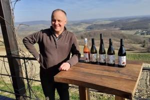 Zlatna žutica mu prepolovila vinograd, ali Tomislav Bolfan od eko pristupa ne odustaje