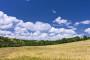 Biti ili ne biti za ekološku poljoprivredu