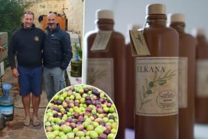 Hrvatska ima Elkanu - prvo domaće košer maslinovo ulje!
