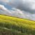 Prijedlog pravilnika o zaštiti poljoprivrednog zemljišta od onečišćenja