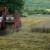 Pčinjski okrug: Kvalitet ovogodišnje pšenice bolji nego prošlogodišnji