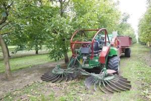 Akcijske cijene za prednarudžbu strojeva FACMA za sakupljanje i preradu jezgričavog voća!