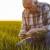Kako zaštiti od bolesti, sprečiti poleganje i osigurati prinos strnih žita